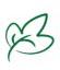 Der Meerrettich – ist die Heilpflanze des Jahres 2021